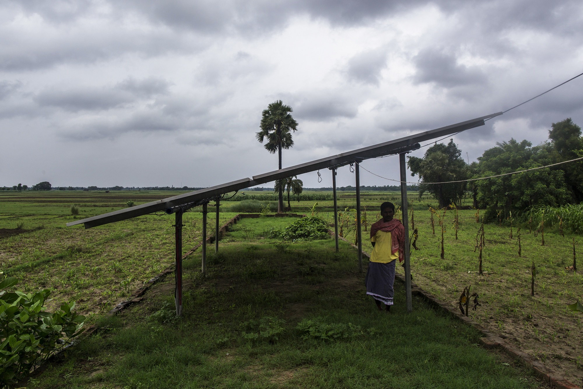 A man stands under solar panels, part of a solar power microgrid owned and operated by Veddis Solars Pvt., in the village of Kayam, Bihar, India, on Friday, July 10, 2015. While Prime Minister Narendra Modi's ambition has led billionaires such as Foxconn Technology Group's Terry Gou to pledge investment, the question remains whether the 750 million Indians living on less than $2 per day can afford or will embrace green energy. Photographer: Prashanth Vishwanathan/Bloomberg
